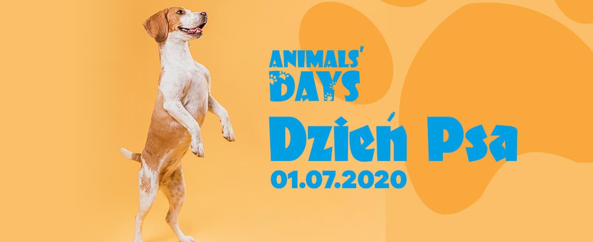 Animals' Days celebrują Dzień Psa